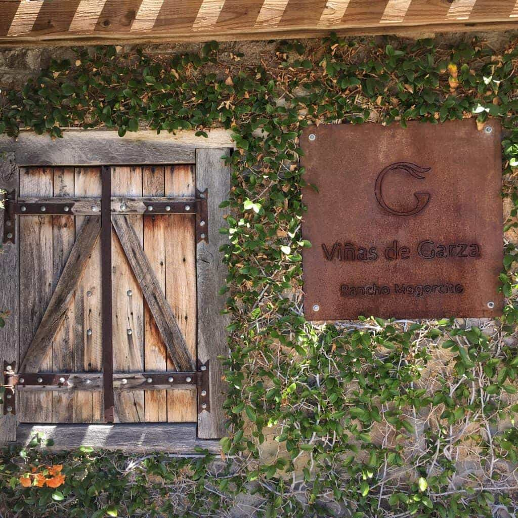 Valle De Guadalupe - Mexico's Wine Country - Sunny Coastlines