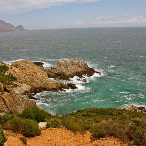Cape Whale Route ~ Sunny Coastlines Travel Blog