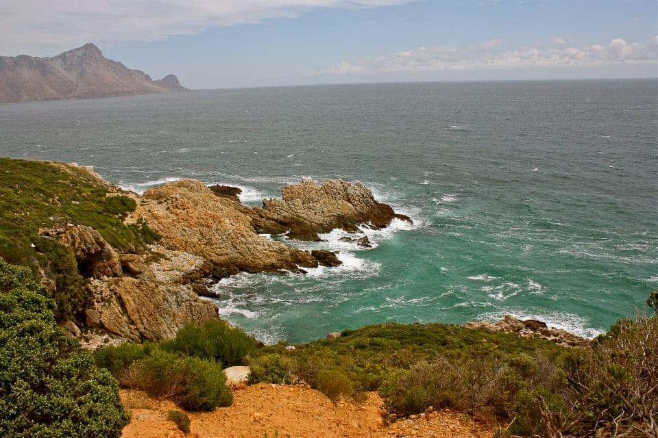 Cape Whale Route ~ Sunny Coastlines Travel Blog