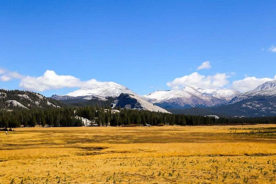 Drive the Sierras ~ Tioga pass