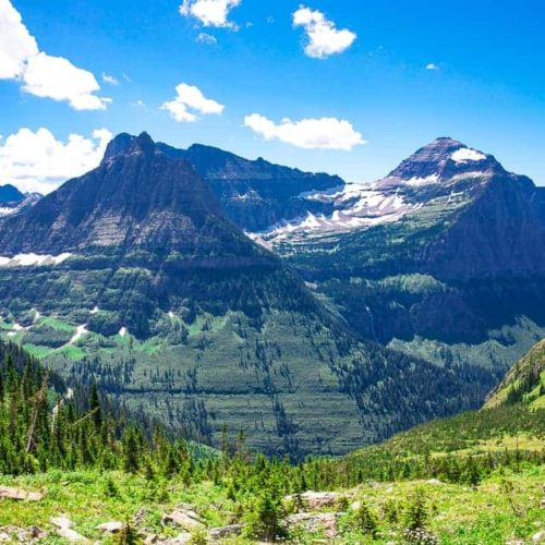 Mountain Views and Fields of Flowers - Glacier National Park's Highline Trail ~ Sunny Coastlines Travels