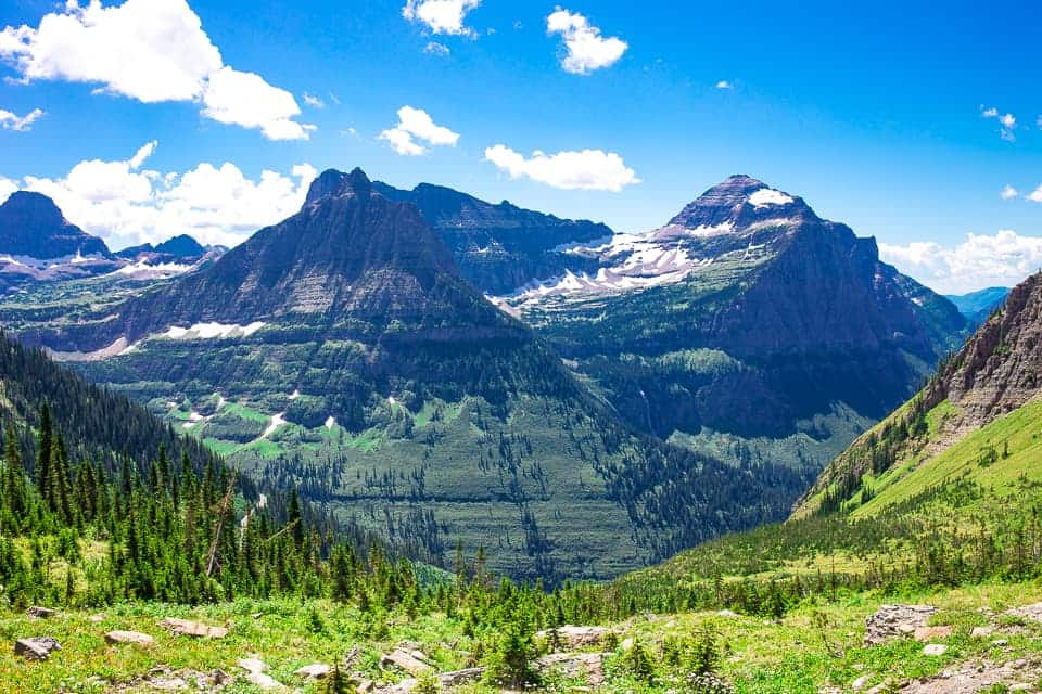 Mountain Views and Fields of Flowers - Glacier National Parks Highline Trail ~ Sunny Coastlines Travels