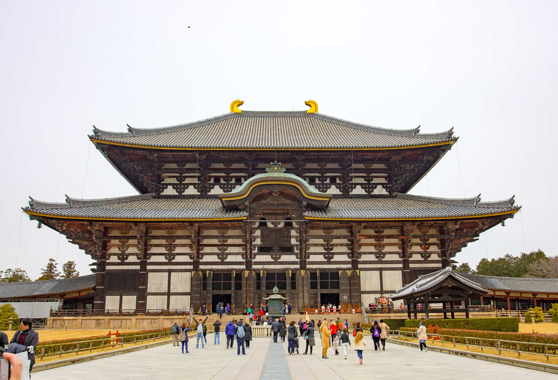 Discovering Nara: Japans Ancient City ~ Sunny Coastlines Travel Blog