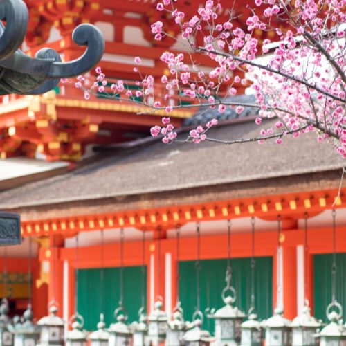 Discovering Nara: Japan's Ancient City ~ Sunny Coastlines Travel Blog