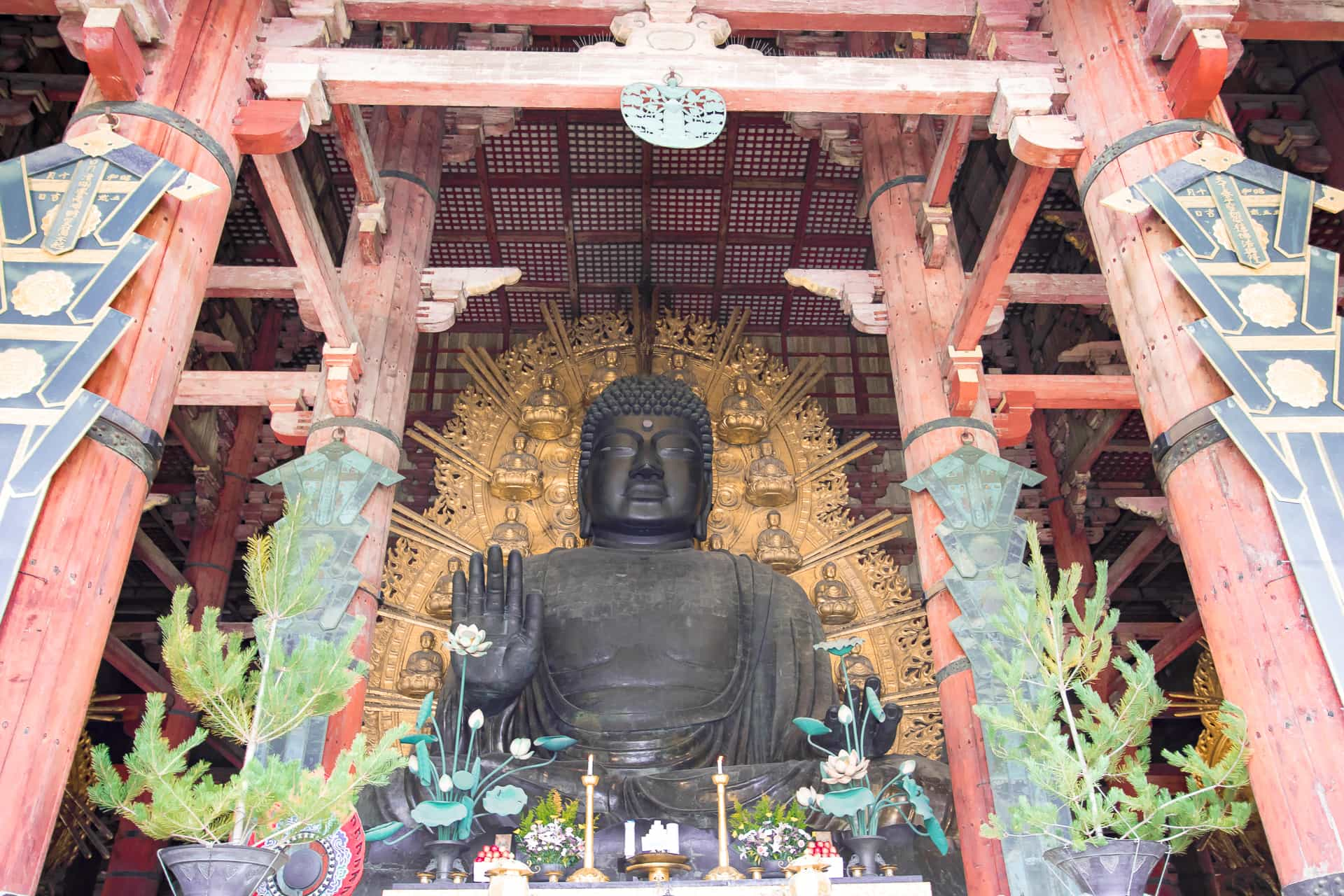 Discovering Nara: Japan's Ancient City ~ Sunny Coastlines Travel Blog
