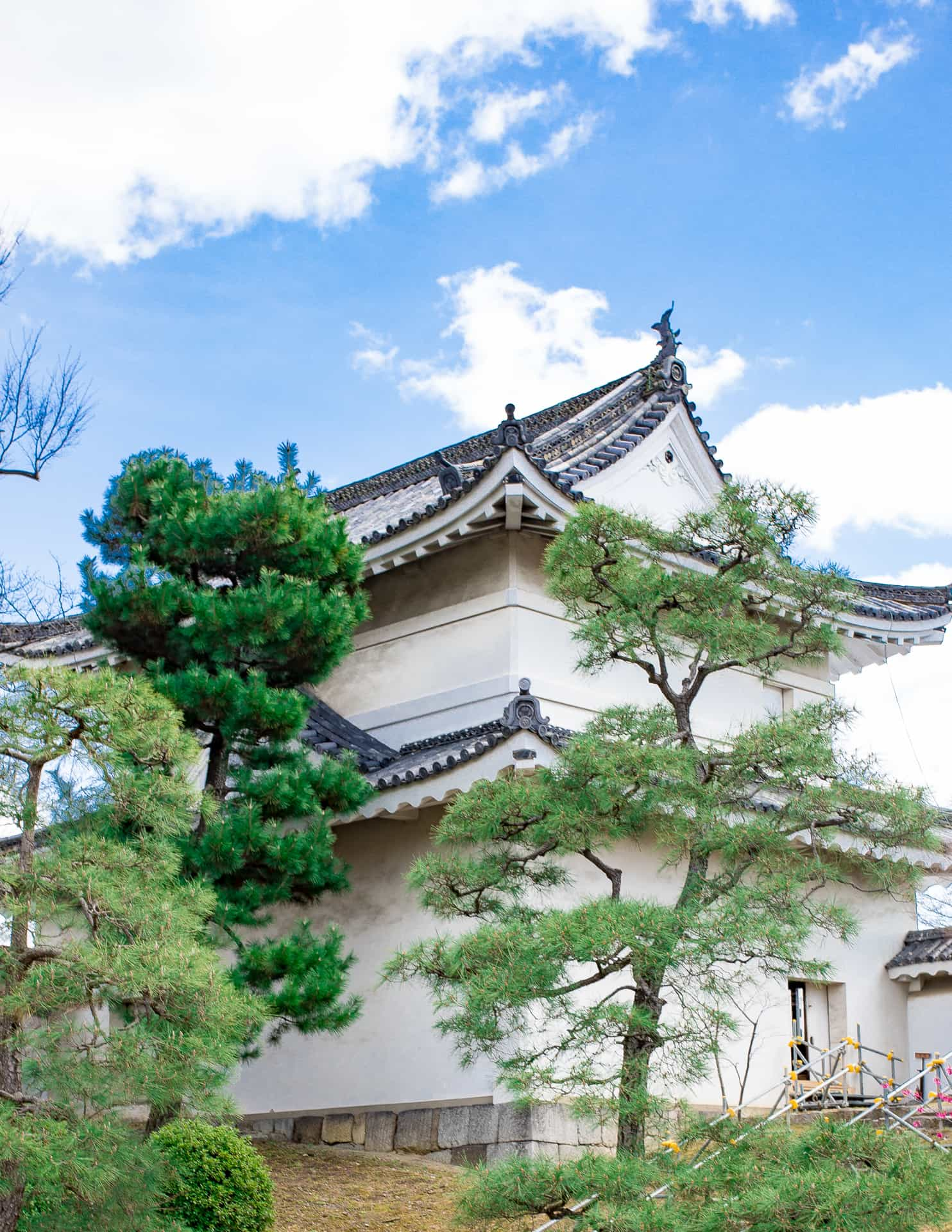 Explore Kyoto Like a Local: Everything You Need To Do