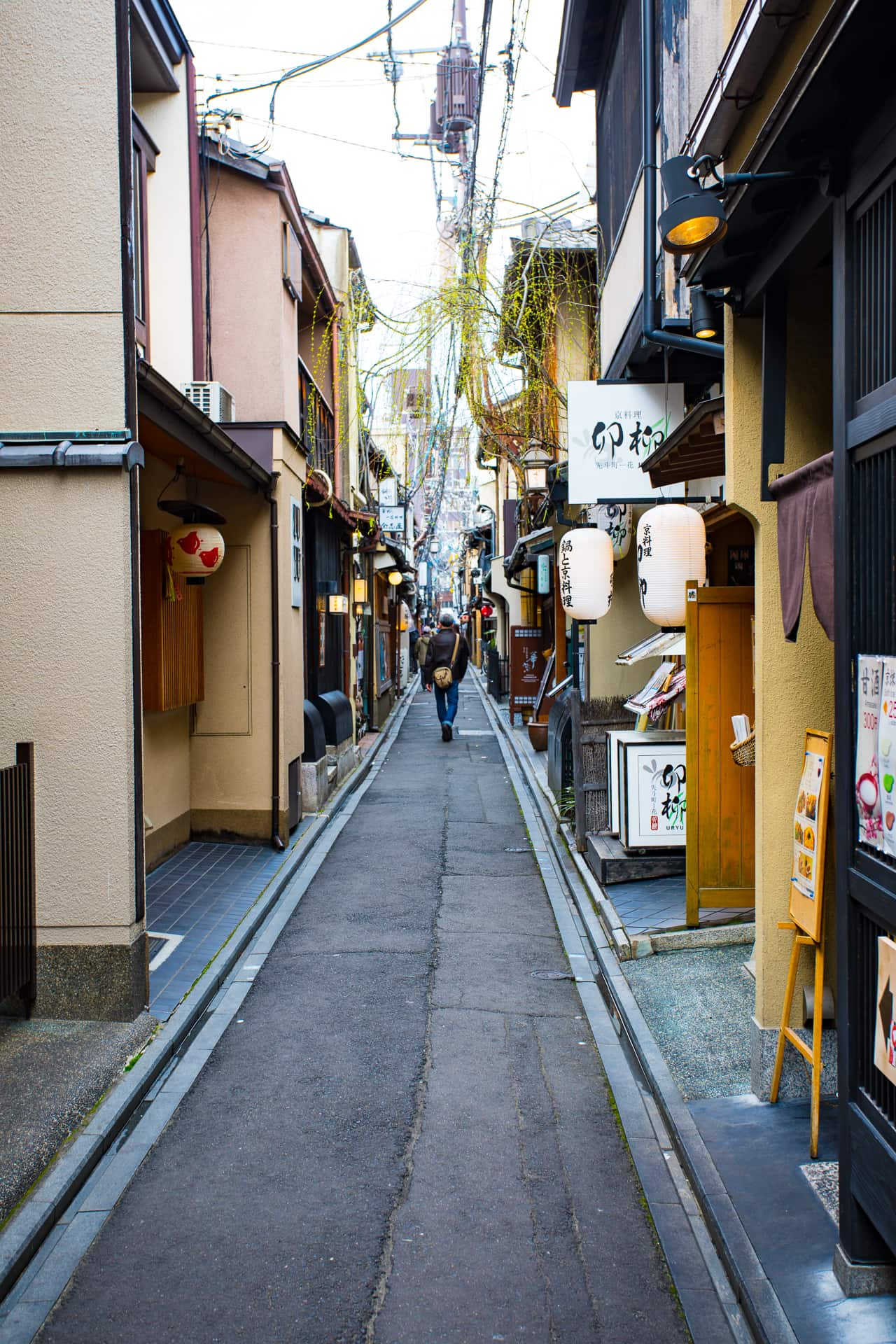 Explore Kyoto Like a Local: Everything You Need To Do~ Sunny Coastlines Travel blog