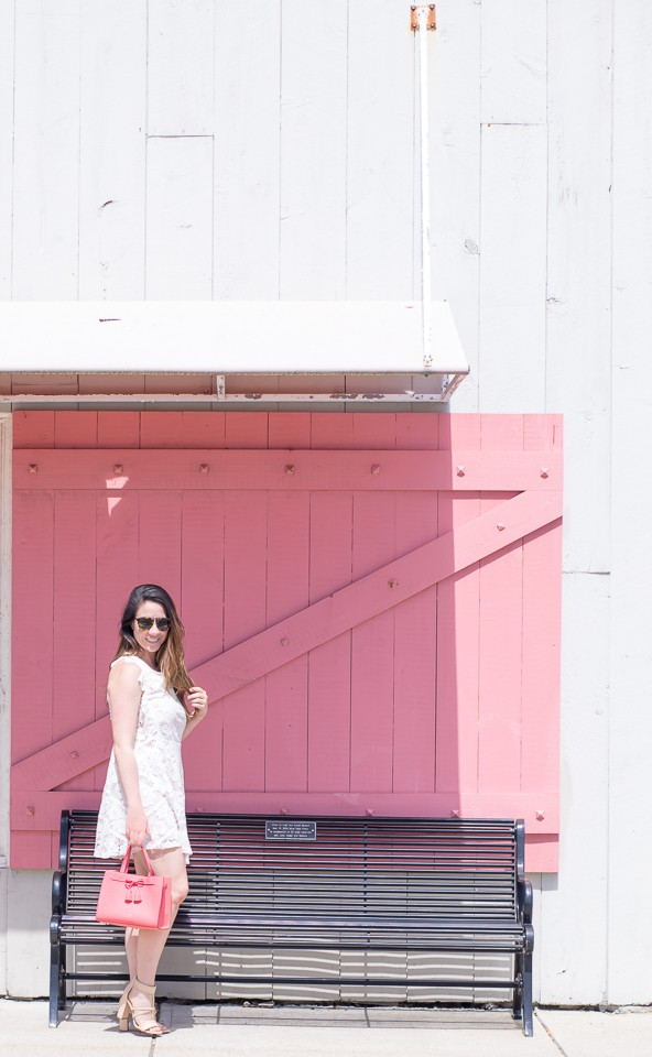 The Little Pink Barn Door in South Shore ~ Sunny Coastlines Style